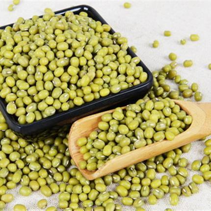 生态种植绿豆