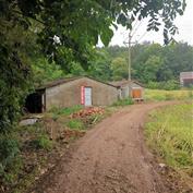 当阳市红梅家庭农场